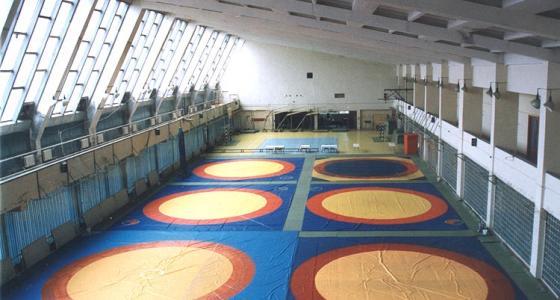 Борцовские покрытия для соревнований и занятий